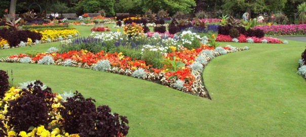 Flower_garden,_Botanic_Gardens,_Churchtown_2